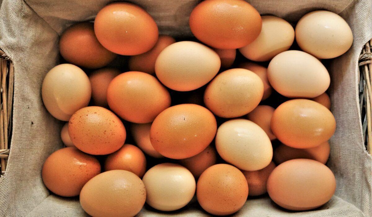 Загадки про яйцо